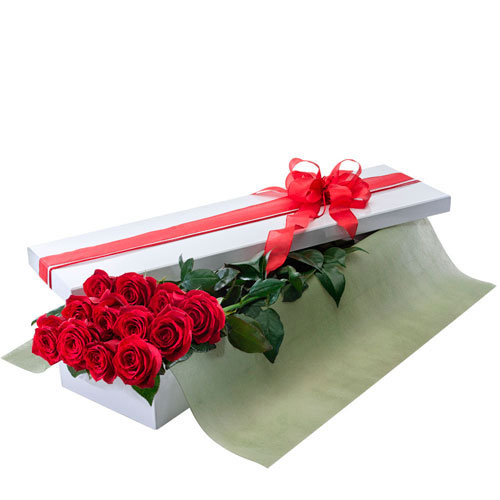 Boxed arrangement of one dozen red roses