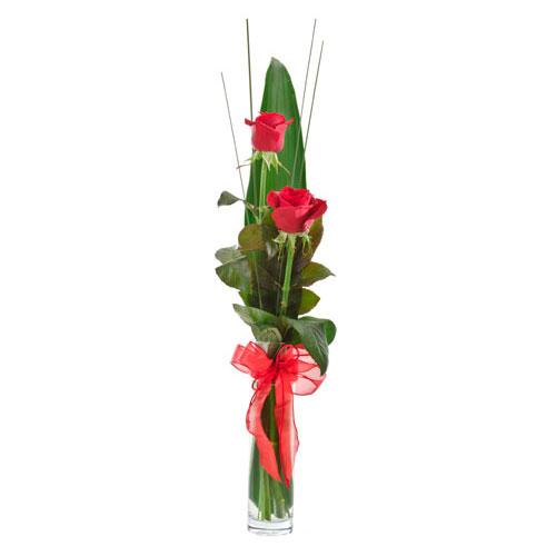 2 long stemmed red roses in glass vase