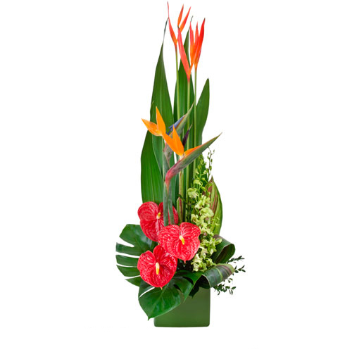 Large Tropical flower arrangement in a Ceramic Container