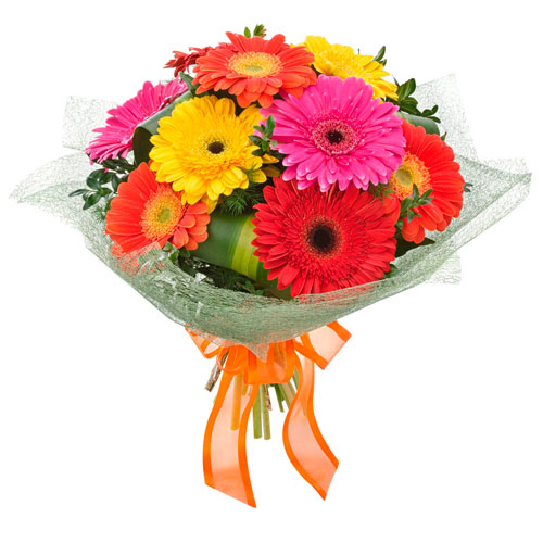 Wrapped arrangement of gerbera flowers