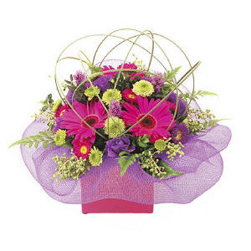 Bright Mini Box of flowers