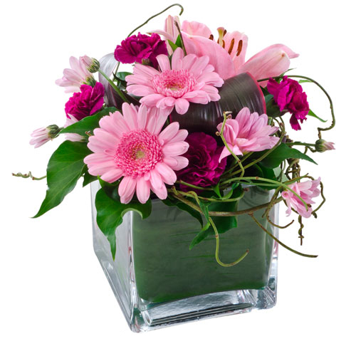 Mixed pink flowers in glass cube