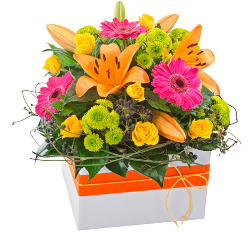 Box of bright, colourful flowers