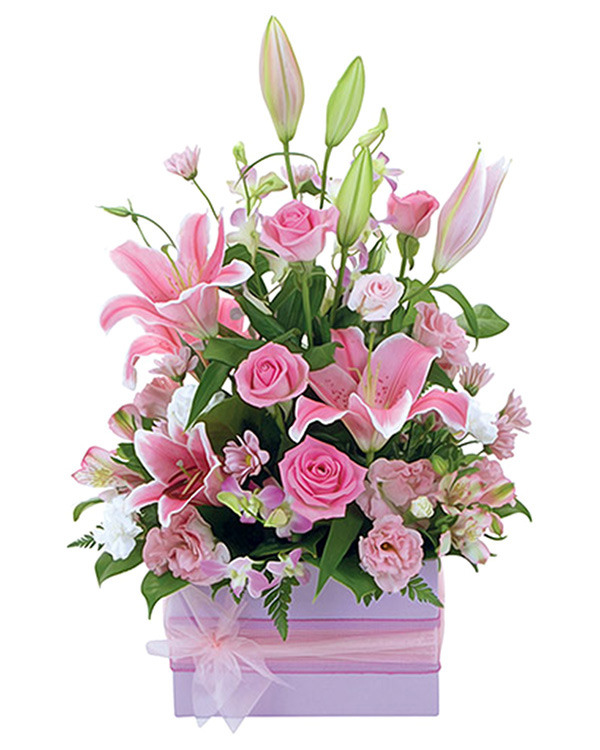 Vibrant boxed arrangement of flowers