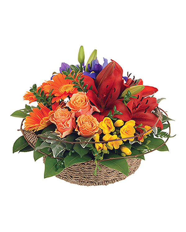 Grouped basket arrangement